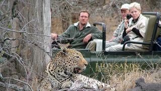 Lion_Sands_Leopard4