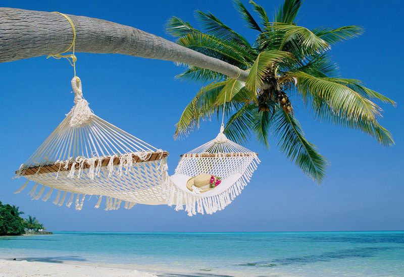 Travel-business-hammock-beach